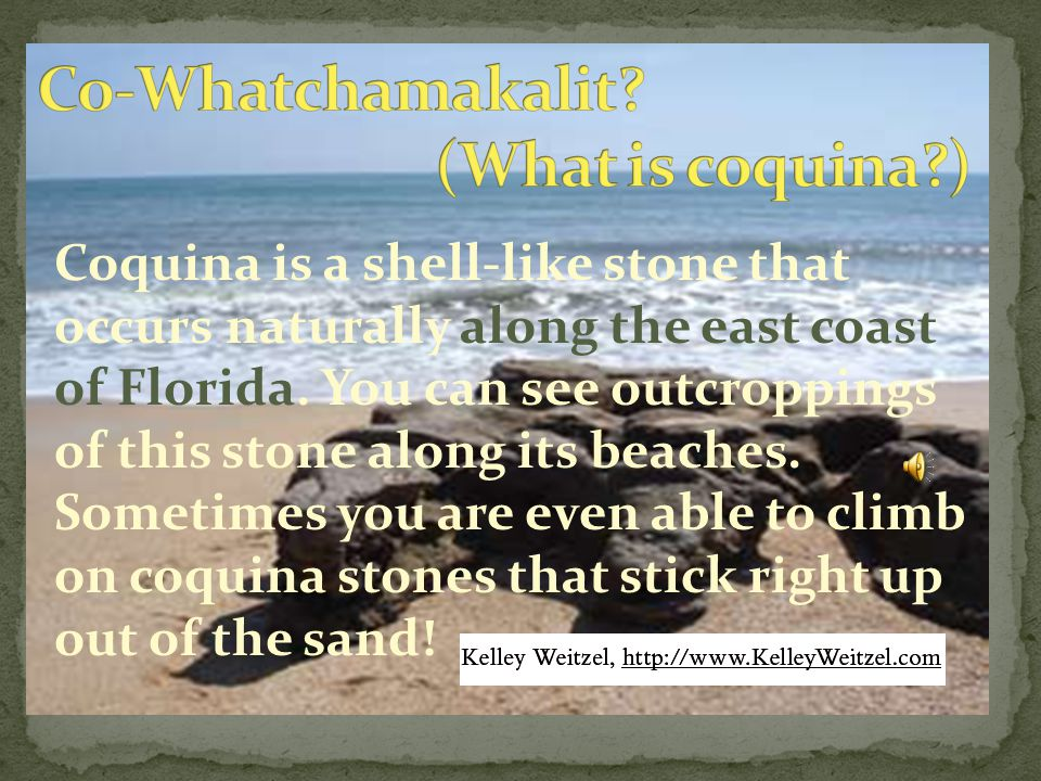 Coquina is a shell-like stone that occurs naturally along the east coast of Florida.