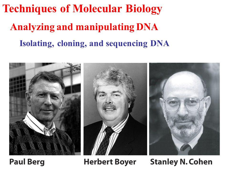 Methods for labeling DNA molecules in vitro.