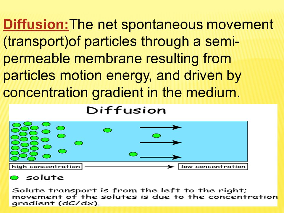 Diffusion:The net spontaneous movement (transport)of particles through a semi- permeable membrane resulting from particles motion energy, and driven b
