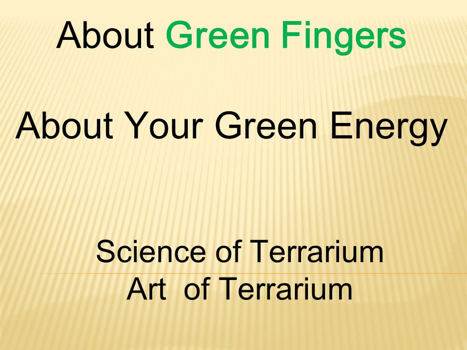 About Green Fingers About Your Green Energy Science of Terrarium Art of Terrarium