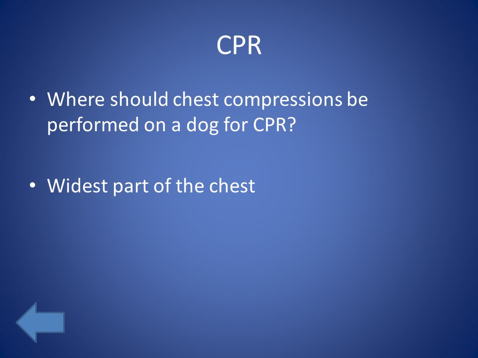 CPR Where should chest compressions be performed on a dog for CPR? Widest part of the chest