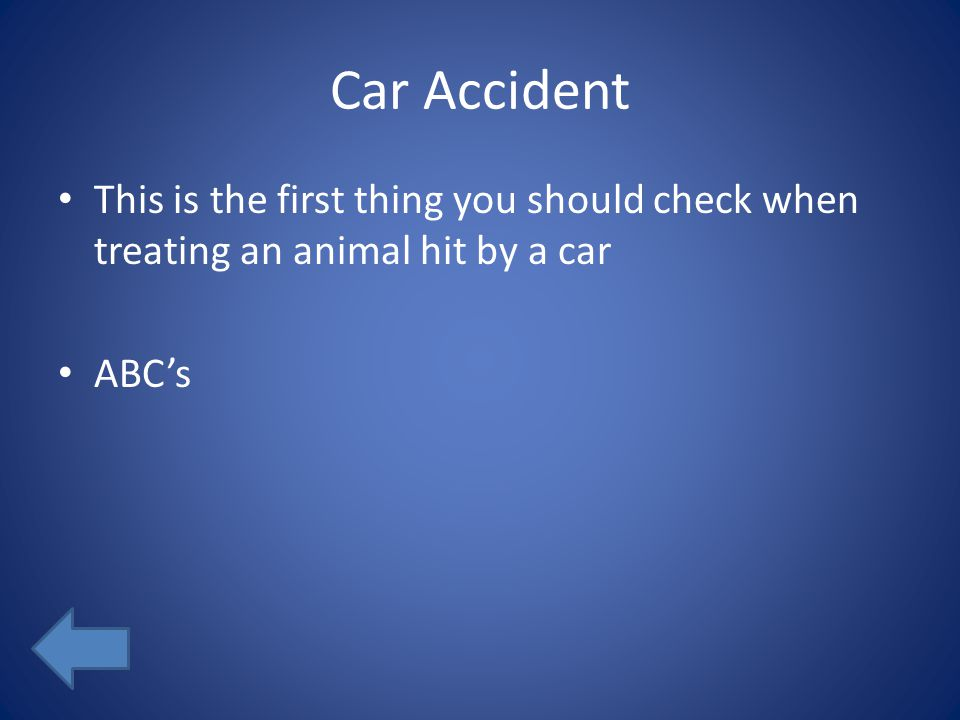 Car Accident This is the first thing you should check when treating an animal hit by a car ABC's