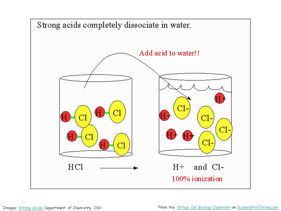 Images: Strong Acids, Department of Chemistry, CSUStrong Acids From the Virtual Cell Biology Classroom on ScienceProfOnline.comVirtual Cell Biology ClassroomScienceProfOnline.com