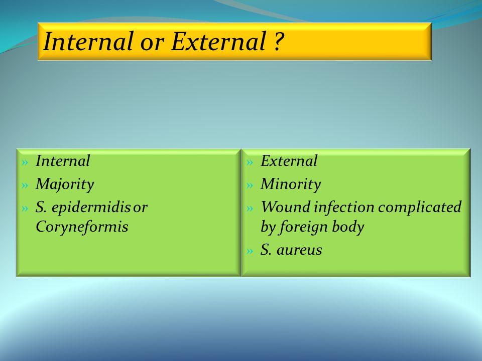 » Internal » Majority » S.