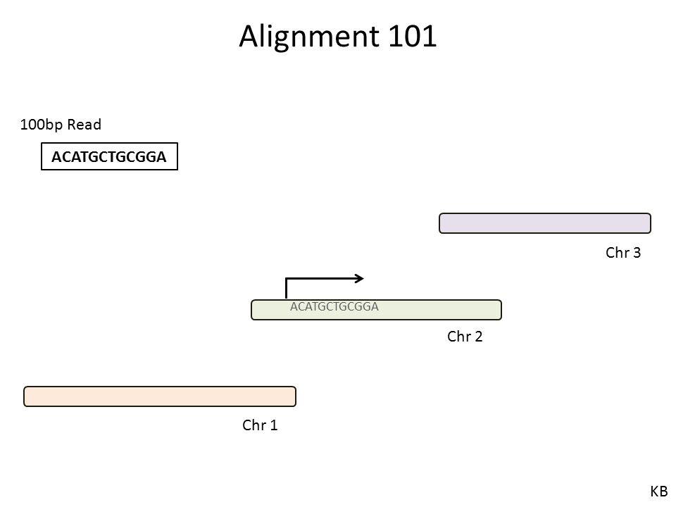 Alignment 101 ACATGCTGCGGA 100bp Read Chr 1 Chr 2 Chr 3 KB