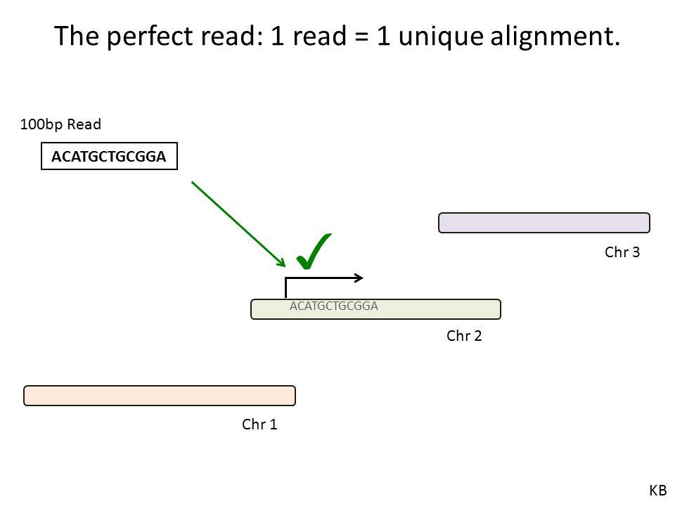 The perfect read: 1 read = 1 unique alignment. ACATGCTGCGGA 100bp Read ✓ Chr 1 Chr 2 Chr 3 KB