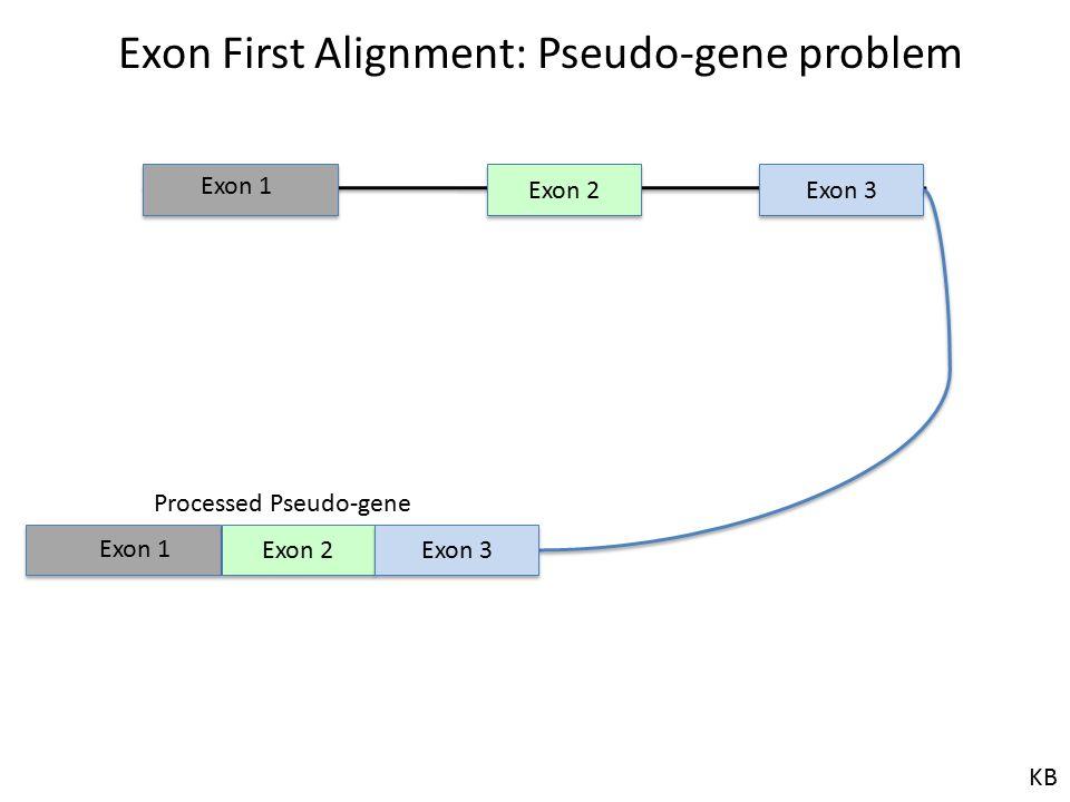 Exon 2 Exon 3 Exon 1 Exon First Alignment: Pseudo-gene problem Exon 2 Exon 3 Exon 1 Processed Pseudo-gene KB