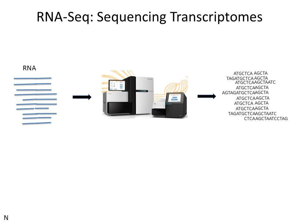 RNA-Seq: Sequencing Transcriptomes ATGCTCA AGCTA TAGATGCTCA AGCTA ATGCTCA AGCTAATC ATGCTCA AGCTA AGTAGATGCTCA AGCTA ATGCTCA AGCTA ATGCTCA AGCTA ATGCTC