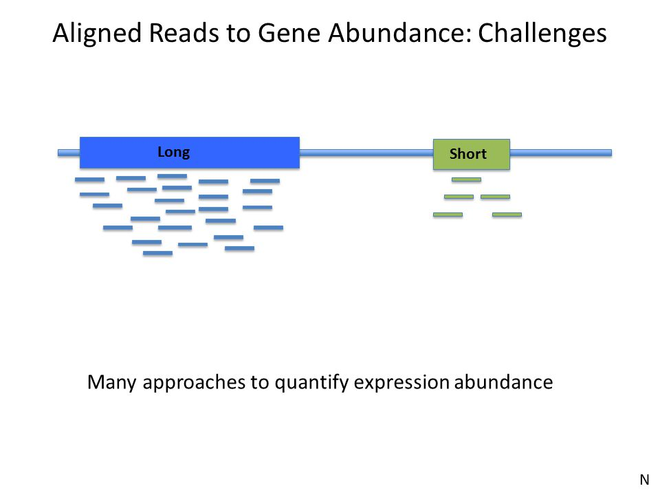 Aligned Reads to Gene Abundance: Challenges Long Short Many approaches to quantify expression abundance N