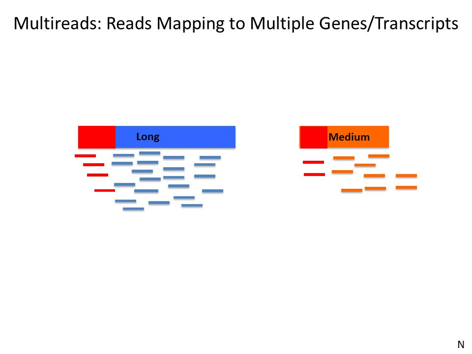 Multireads: Reads Mapping to Multiple Genes/Transcripts Long Medium N