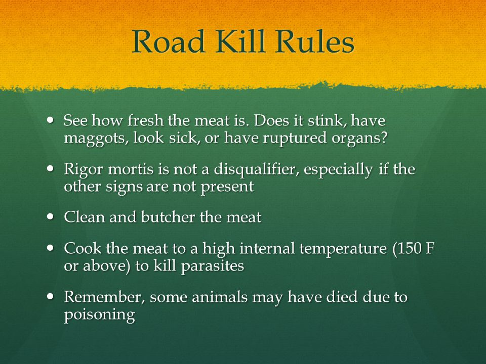 Road Kill Rules See how fresh the meat is.
