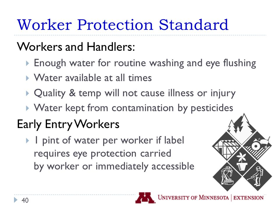 Worker Protection Standard Workers and Handlers:  Enough water for routine washing and eye flushing  Water available at all times  Quality & temp will not cause illness or injury  Water kept from contamination by pesticides Early Entry Workers  1 pint of water per worker if label requires eye protection carried by worker or immediately accessible 40