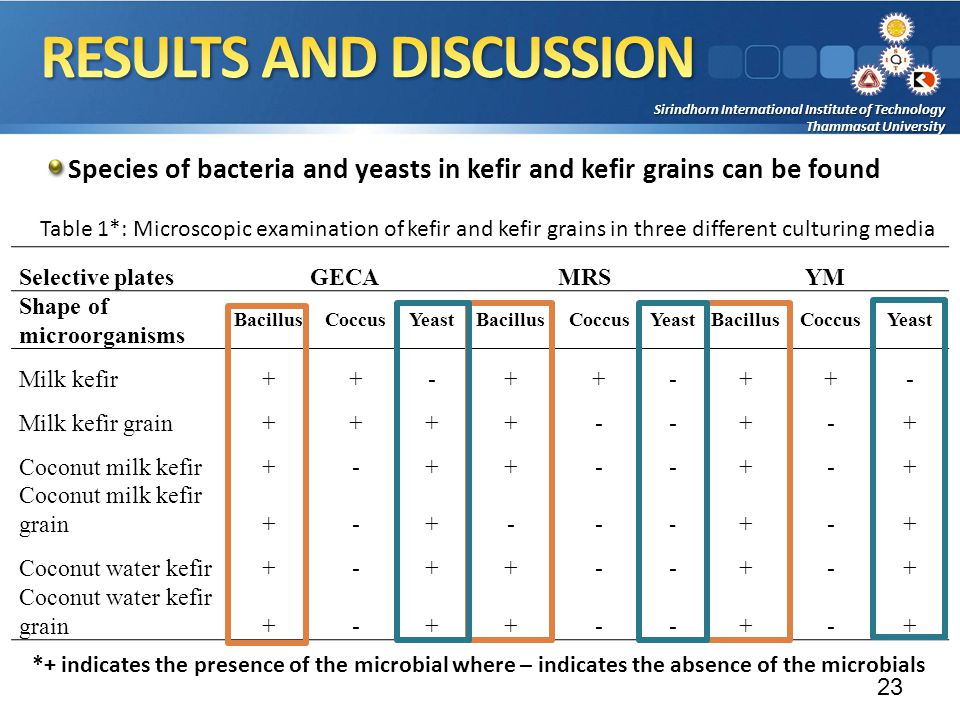 Sirindhorn International Institute of Technology Thammasat University Species of bacteria and yeasts in kefir and kefir grains can be found 23 Selective platesGECAMRSYM Shape of microorganisms BacillusCoccusYeastBacillusCoccusYeastBacillusCoccusYeast Milk kefir++-++-++- Milk kefir grain++++--+-+ Coconut milk kefir+-++--+-+ Coconut milk kefir grain+-+-- - +-+ Coconut water kefir+-++--+-+ Coconut water kefir grain+-++--+-+ *+ indicates the presence of the microbial where – indicates the absence of the microbials Table 1*: Microscopic examination of kefir and kefir grains in three different culturing media