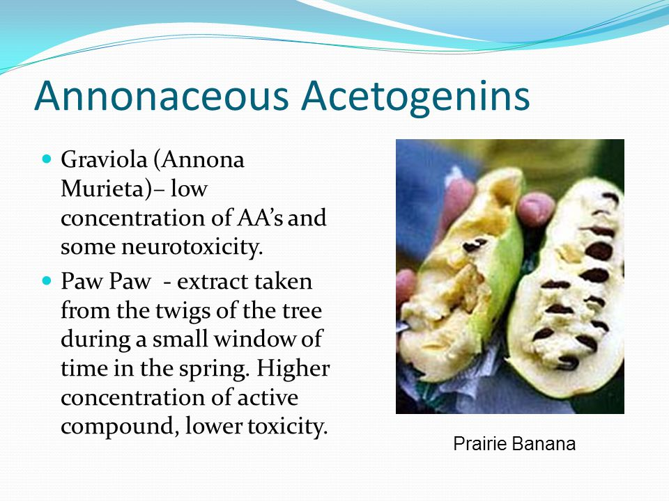 Annonaceous Acetogenins Graviola (Annona Murieta)– low concentration of AA's and some neurotoxicity.