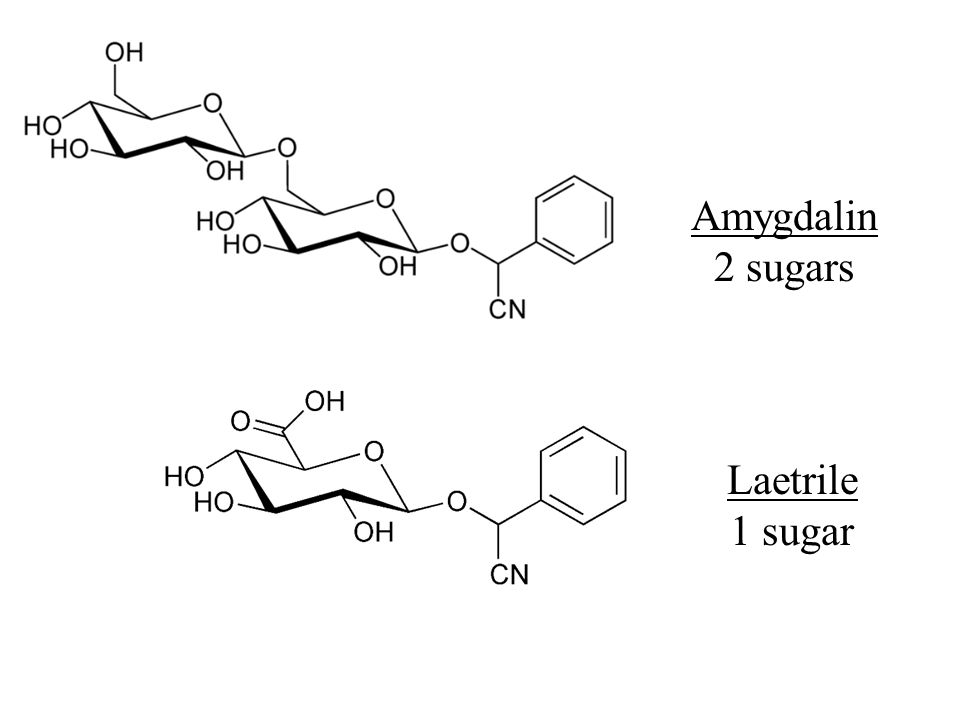 Amygdalin 2 sugars Laetrile 1 sugar