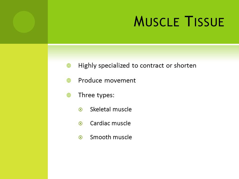 M USCLE T ISSUE  Highly specialized to contract or shorten  Produce movement  Three types:  Skeletal muscle  Cardiac muscle  Smooth muscle
