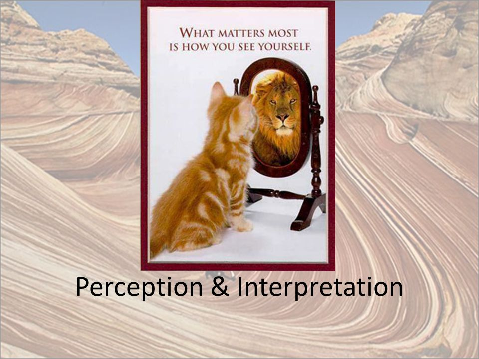 Perception & Interpretation