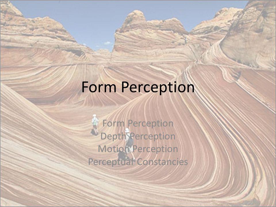 Form Perception Depth Perception Motion Perception Perceptual Constancies