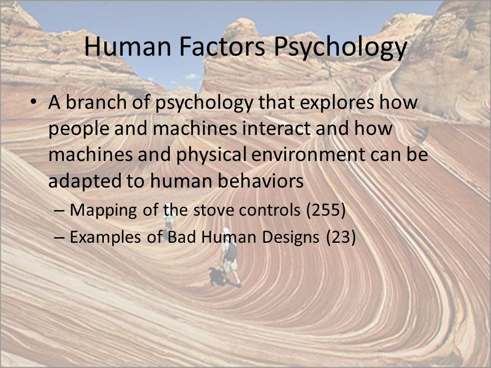 Human Factors Psychology A branch of psychology that explores how people and machines interact and how machines and physical environment can be adapte