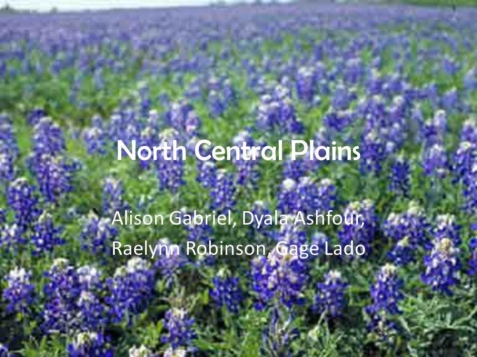 North Central Plains Alison Gabriel, Dyala Ashfour, Raelynn Robinson, Gage Lado