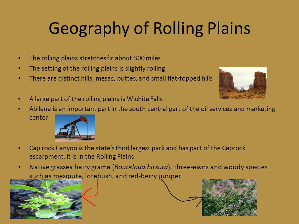 Rolling Plains State Parks Abilene State Park Big Spring State Park Caprock Canyons State Park Copper Breaks State Park Fort Griffin State Park and Hi