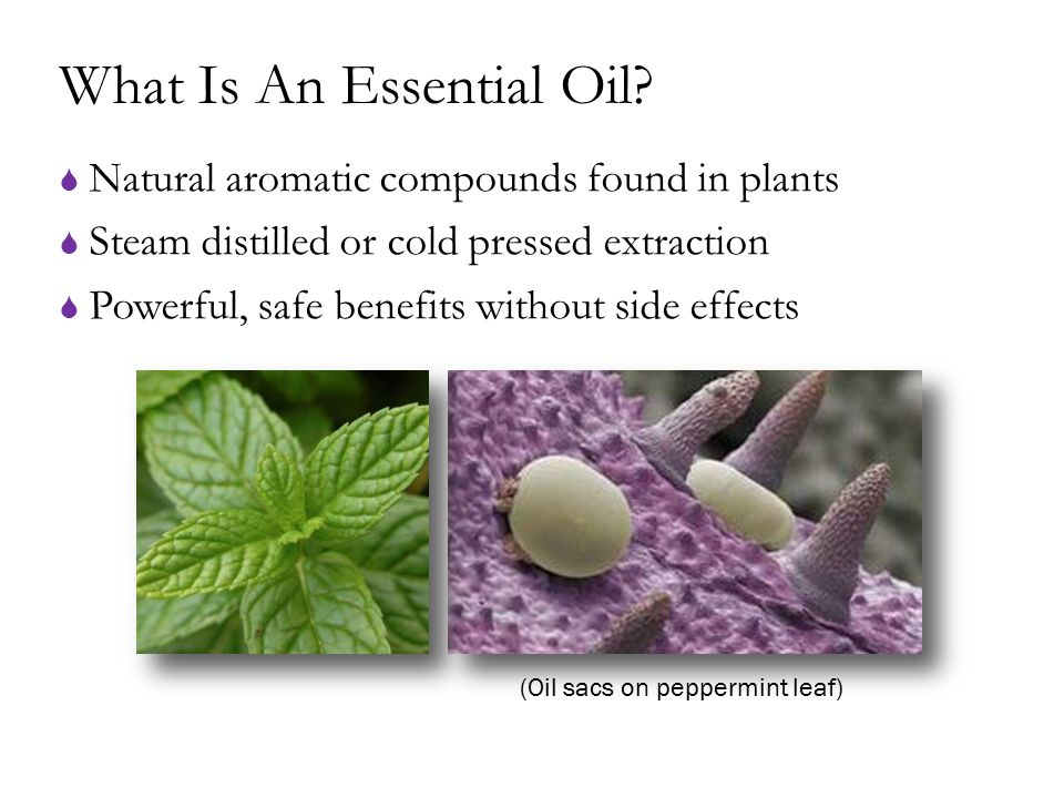 What Is An Essential Oil?  Natural aromatic compounds found in plants  Steam distilled or cold pressed extraction  Powerful, safe benefits without