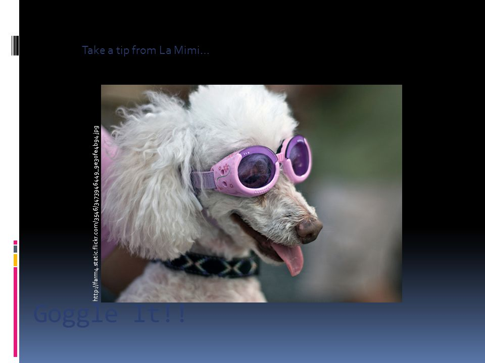 Goggle It!.