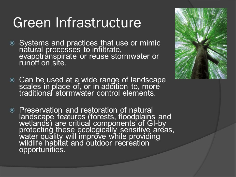 Green Infrastructure Systems that mimic a natural hydrologic cycle to take stormwater and slow it down, spread it out, and soak it in.