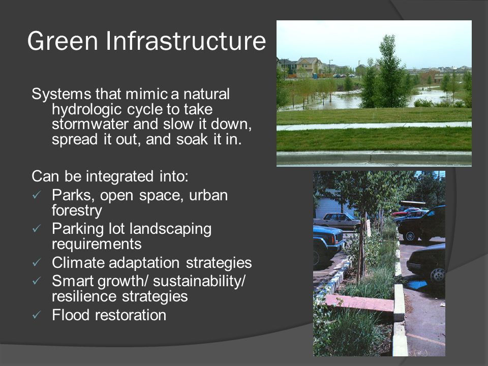 Types of Green Infrastructure  Green Roofs  Planter Boxes  Rain Gardens  Bioswales/Bioretention Cells  Vegetated Swales, Tree Trenches  Ponds  Porous Pavements  Green Streets/Complete Streets  Wetlands, Riparian areas  Rainwater Harvesting