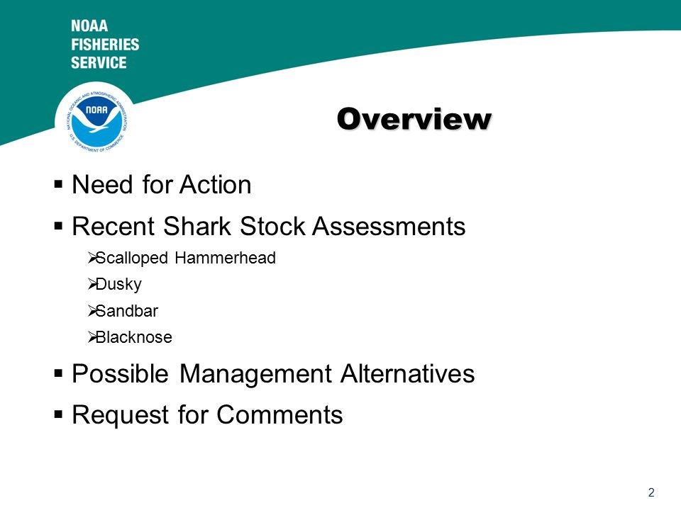 2 Overview   Need for Action   Recent Shark Stock Assessments   Scalloped Hammerhead   Dusky   Sandbar   Blacknose   Possible Management Alternatives   Request for Comments