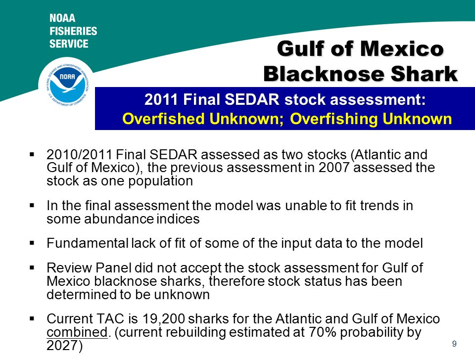 9 Gulf of Mexico Blacknose Shark  2010/2011 Final SEDAR assessed as two stocks (Atlantic and Gulf of Mexico), the previous assessment in 2007 assessed the stock as one population  In the final assessment the model was unable to fit trends in some abundance indices  Fundamental lack of fit of some of the input data to the model  Review Panel did not accept the stock assessment for Gulf of Mexico blacknose sharks, therefore stock status has been determined to be unknown  Current TAC is 19,200 sharks for the Atlantic and Gulf of Mexico combined.