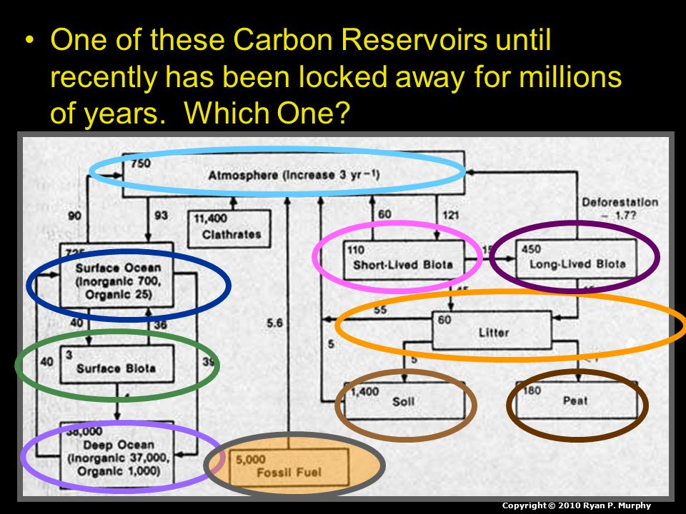 One of these Carbon Reservoirs until recently has been locked away for millions of years.