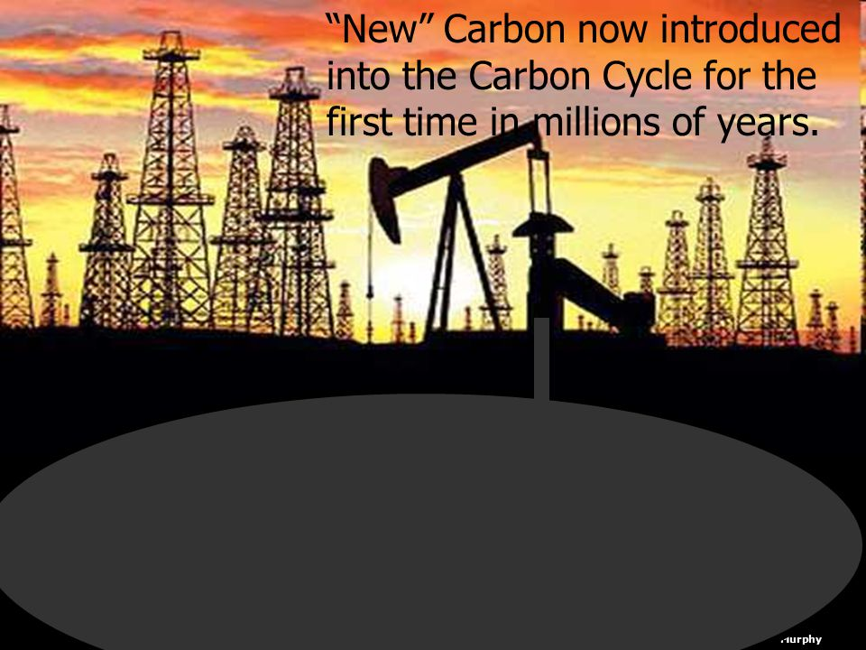 "Copyright © 2010 Ryan P. Murphy ""New"" Carbon now introduced into the Carbon Cycle for the first time in millions of years."