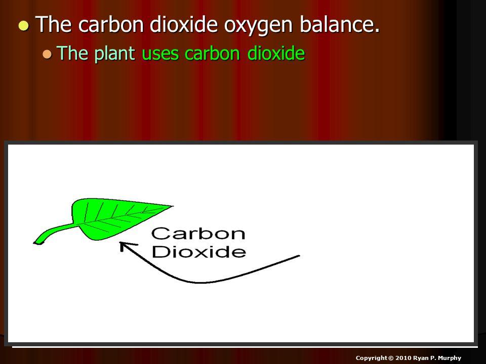 The carbon dioxide oxygen balance. The carbon dioxide oxygen balance.