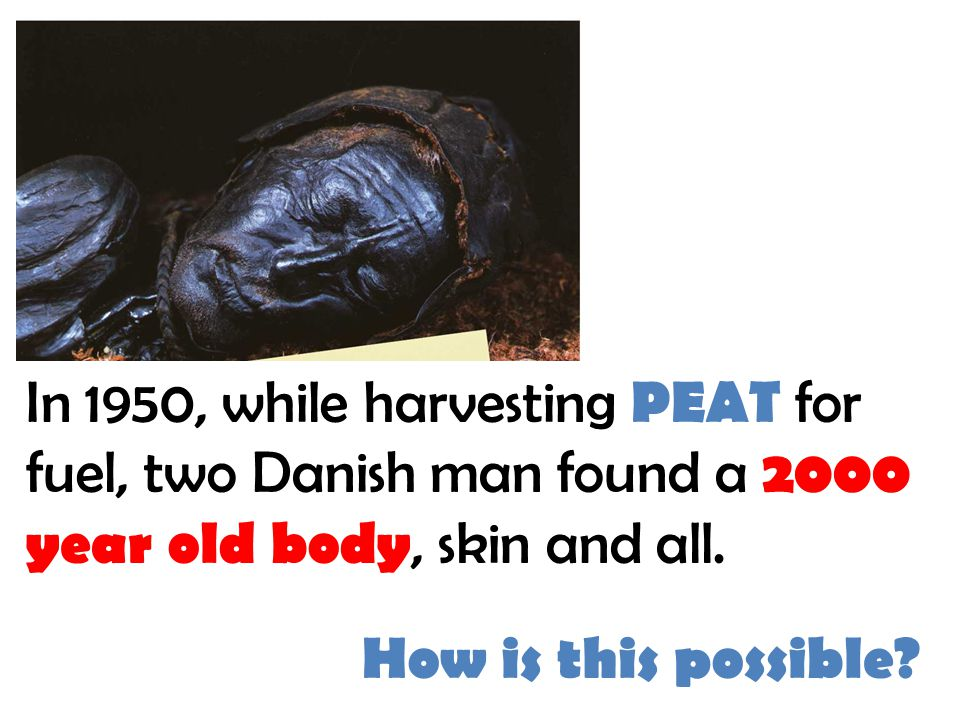 In 1950, while harvesting PEAT for fuel, two Danish man found a 2000 year old body, skin and all.