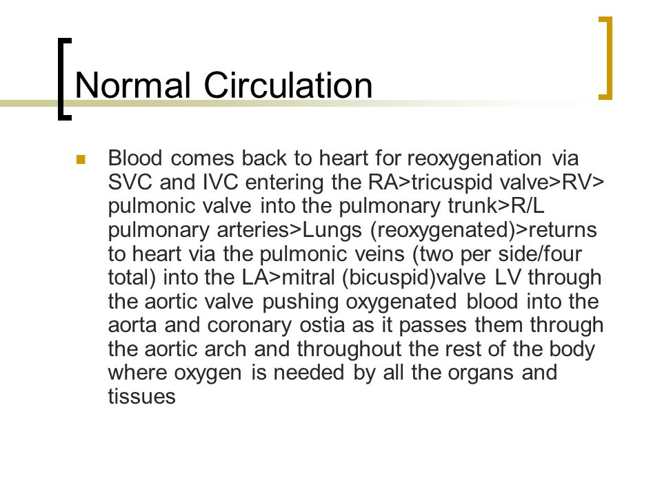 Cardiac Cycle Systole 1/3 cardiac cycle Atrial contraction Blood pumped to ventricles filling pulmonary and systemic arteries With volume of blood in ventricles, ventricular pressure greater than atrial Mitral and tricuspid valves shut Ventricles contract, blood pushed into pulmonic and aortic valves