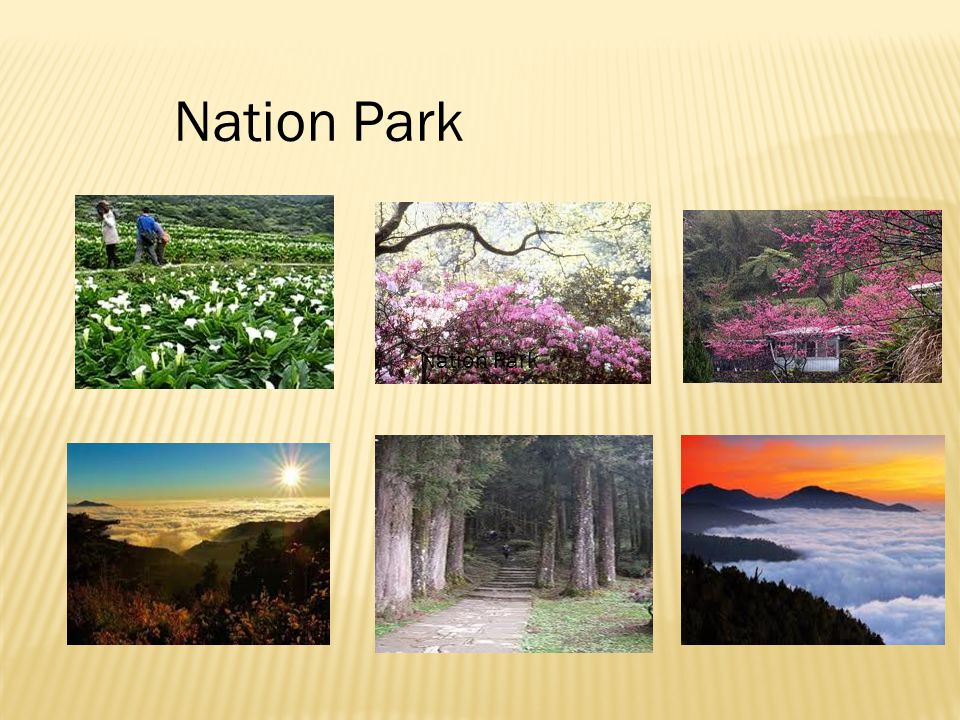 Nation Park