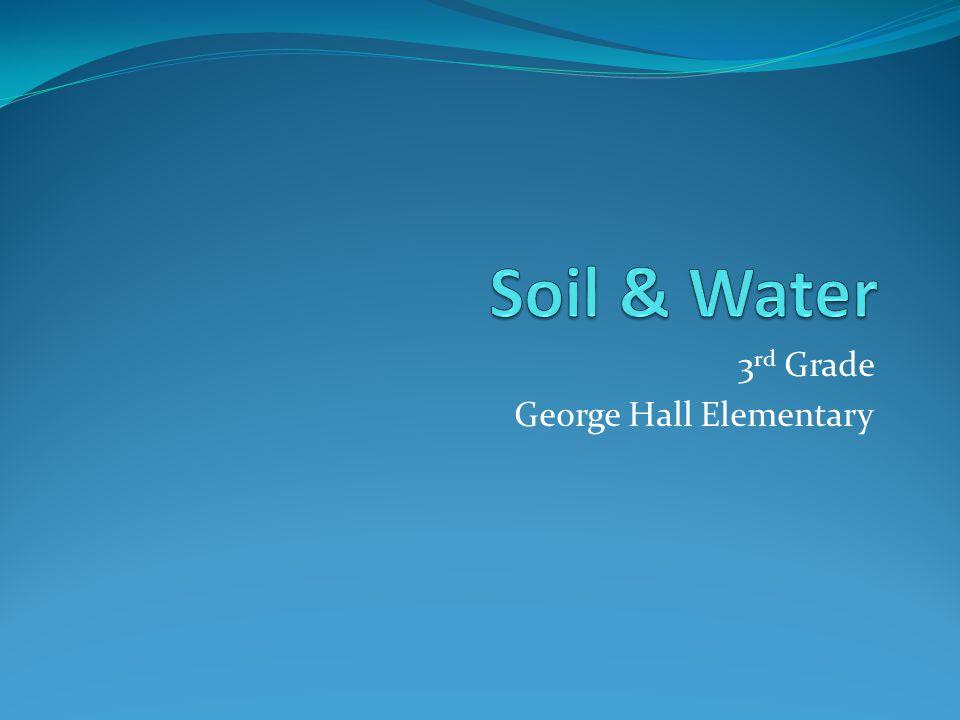 3 rd Grade George Hall Elementary