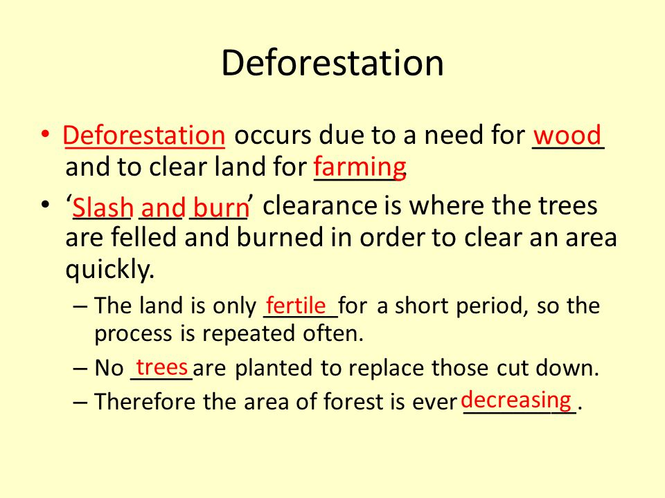 Deforestation ___________ occurs due to a need for _____ and to clear land for ______. '____ ___ ____' clearance is where the trees are felled and bur