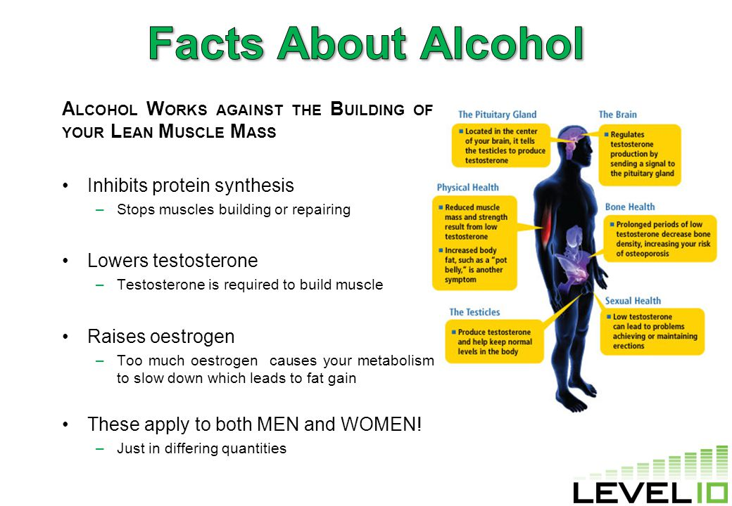 A LCOHOL W ORKS AGAINST THE B UILDING OF YOUR L EAN M USCLE M ASS Inhibits protein synthesis –Stops muscles building or repairing Lowers testosterone –Testosterone is required to build muscle Raises oestrogen –Too much oestrogen causes your metabolism to slow down which leads to fat gain These apply to both MEN and WOMEN.