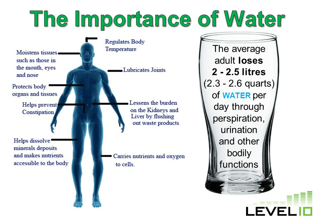 The average adult loses 2 - 2.5 litres (2.3 - 2.6 quarts) of WATER per day through perspiration, urination and other bodily functions