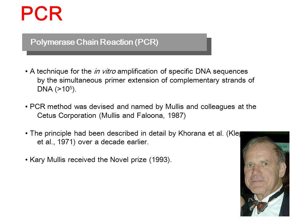 Polymerase Chain Reaction (PCR) A technique for the in vitro amplification of specific DNA sequences by the simultaneous primer extension of complementary strands of DNA (>10 5 ).