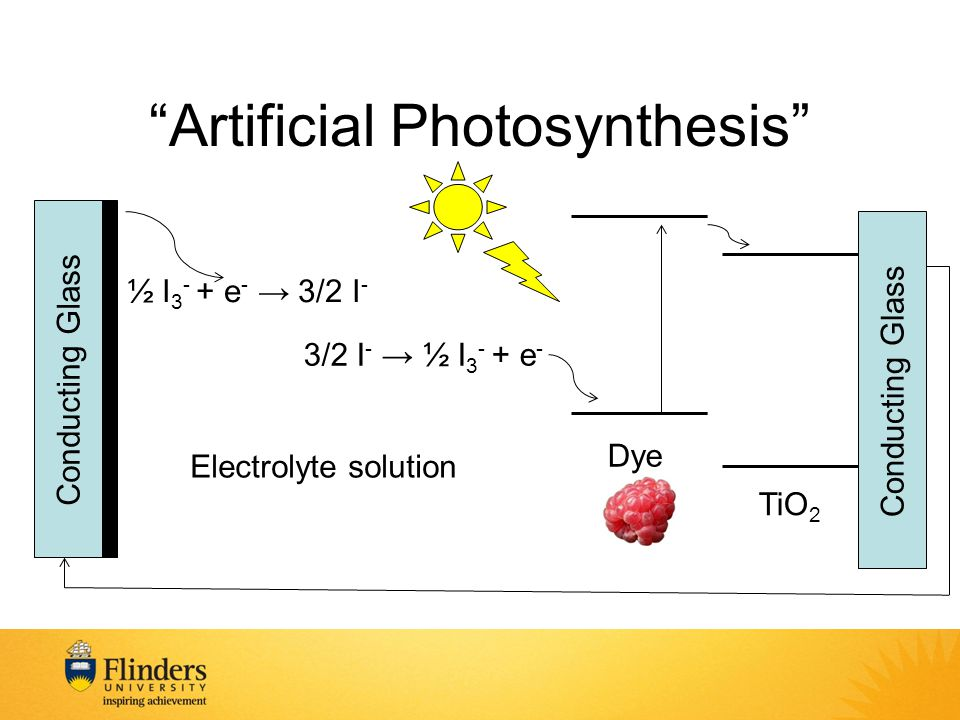 Artificial Photosynthesis TiO 2 Conducting Glass Dye ½ I 3 - + e - → 3/2 I - 3/2 I - → ½ I 3 - + e - Electrolyte solution Conducting Glass