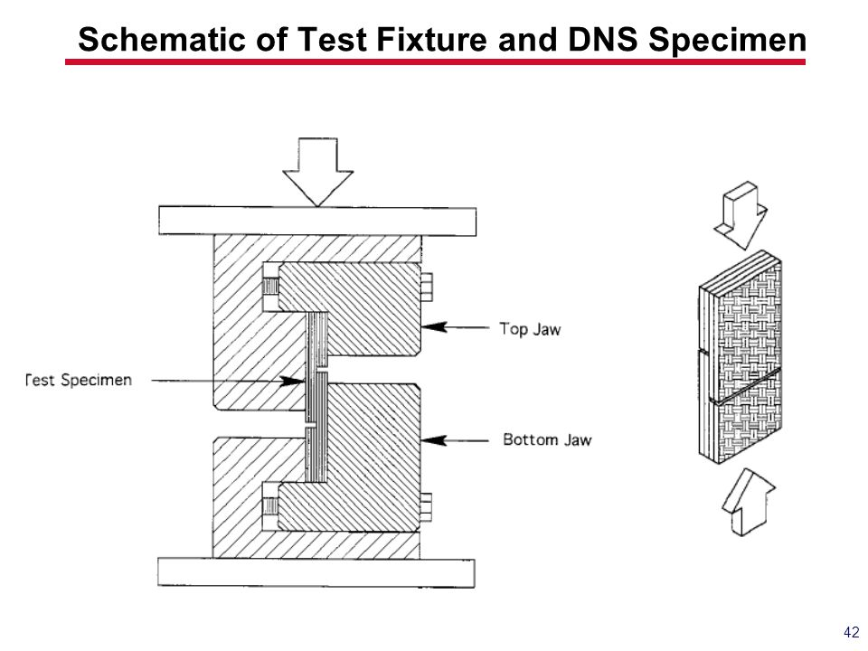 Schematic of Test Fixture and DNS Specimen 42