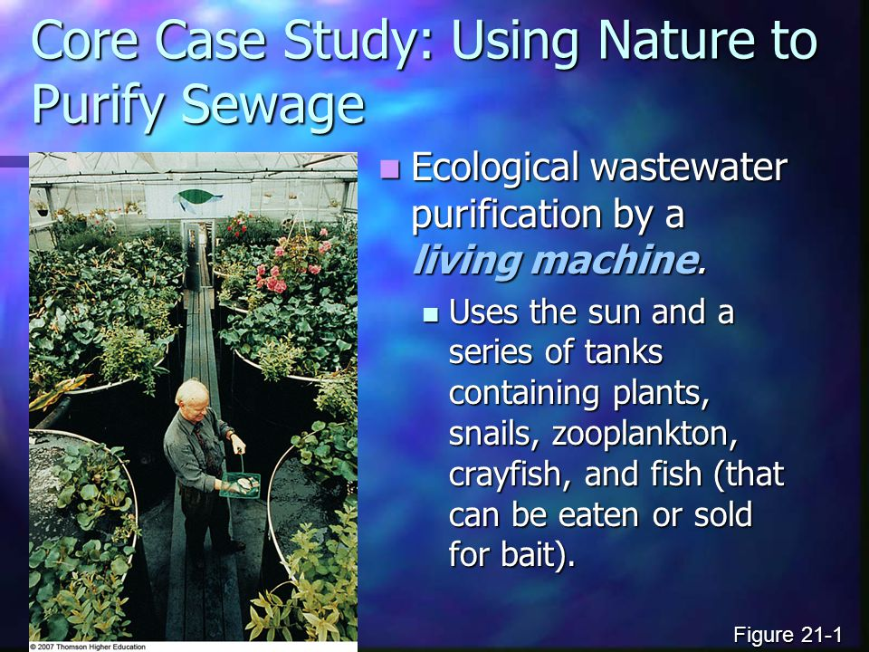 Core Case Study: Using Nature to Purify Sewage Ecological wastewater purification by a living machine. Ecological wastewater purification by a living