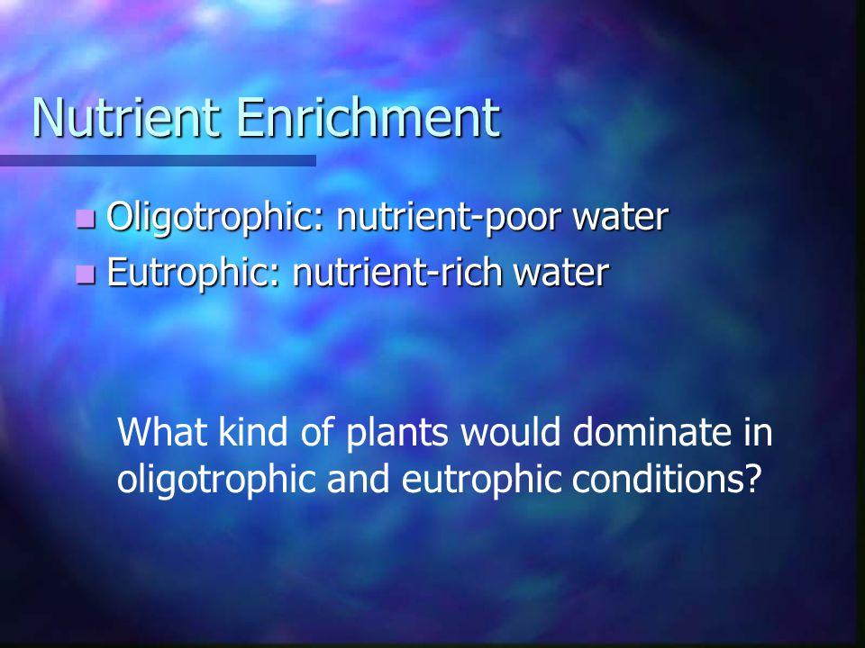 Nutrient Enrichment Oligotrophic: nutrient-poor water Oligotrophic: nutrient-poor water Eutrophic: nutrient-rich water Eutrophic: nutrient-rich water