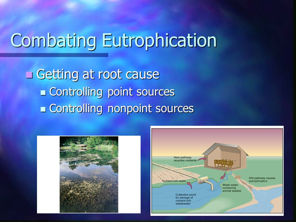 Combating Eutrophication Getting at root cause Getting at root cause Controlling point sources Controlling point sources Controlling nonpoint sources