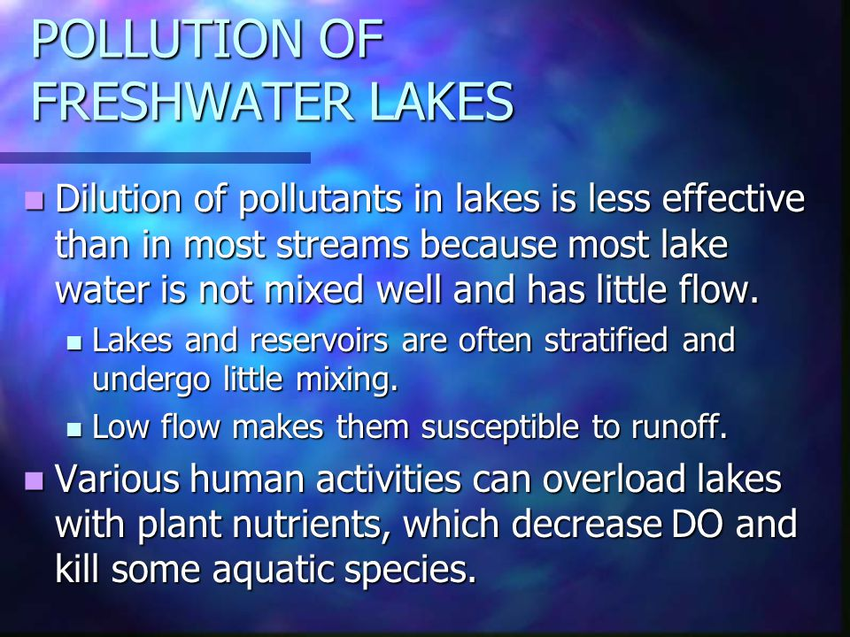 POLLUTION OF FRESHWATER LAKES Dilution of pollutants in lakes is less effective than in most streams because most lake water is not mixed well and has