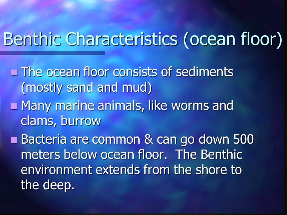 Benthic Characteristics (ocean floor) The ocean floor consists of sediments (mostly sand and mud) The ocean floor consists of sediments (mostly sand a