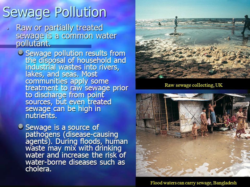‣ Raw or partially treated sewage is a common water pollutant. Sewage pollution results from the disposal of household and industrial wastes into rive